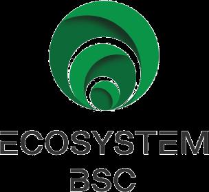 Logo Ecosystem BSC