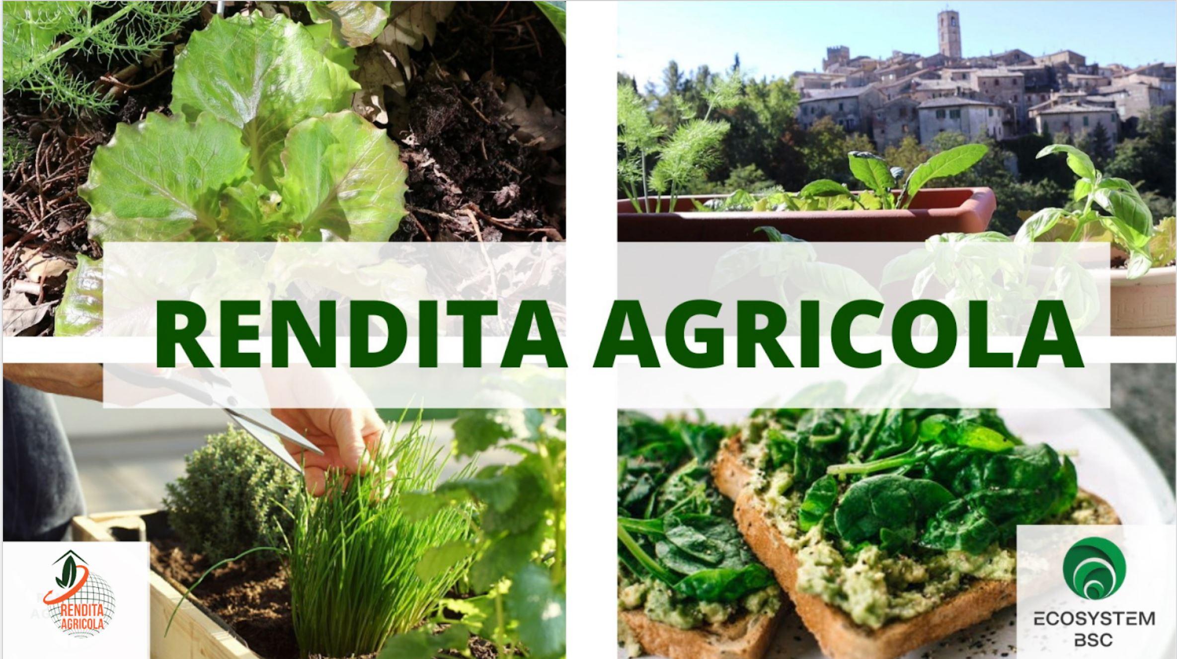Rendita Agricola