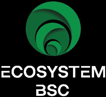 Ecosystem BSC